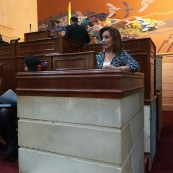 Imagen de la representante Irma Luz Herrera