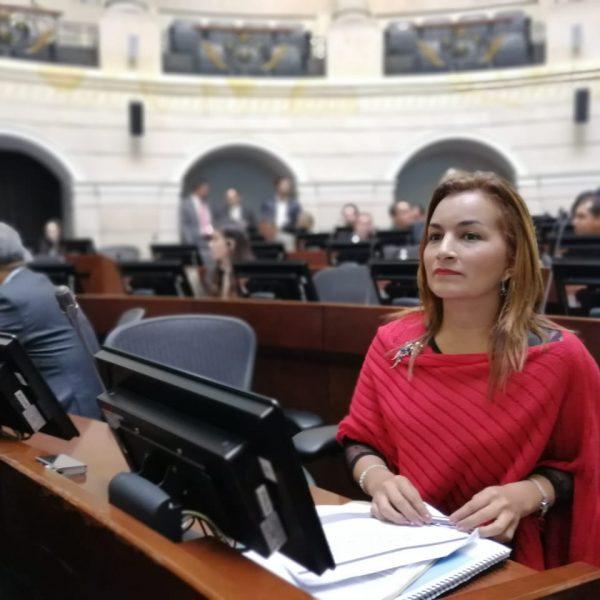 Irma Luz Herrera. Partido MIRA apuesta por Empleo y Emprendimiento